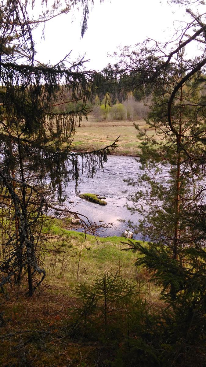 Но где же остальные камни? Смотрим от остатков моста вниз на реку...