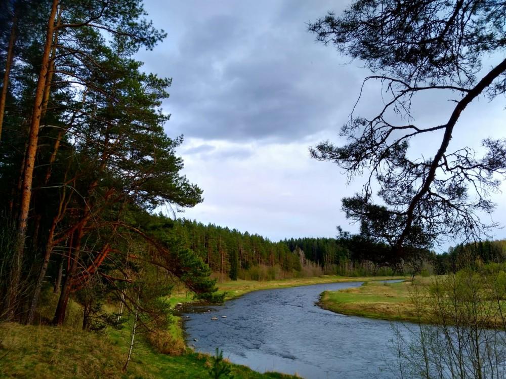 Любуемся пейзажем и радуемся, как нам повезло с местом стоянки...