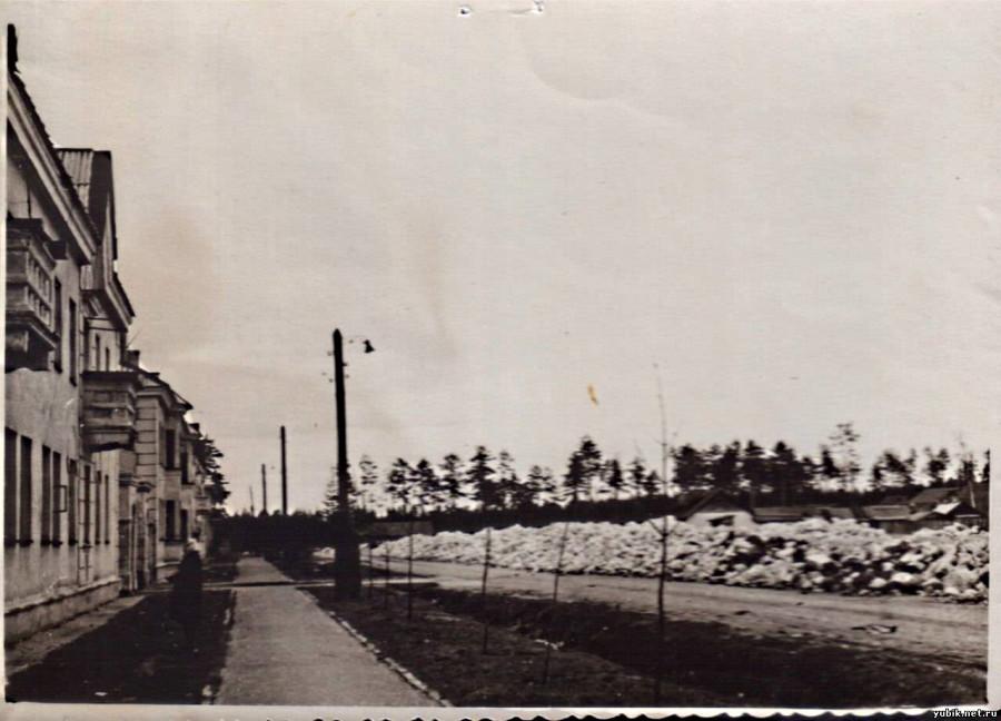 Фрунзе 1950-е резк.jpg