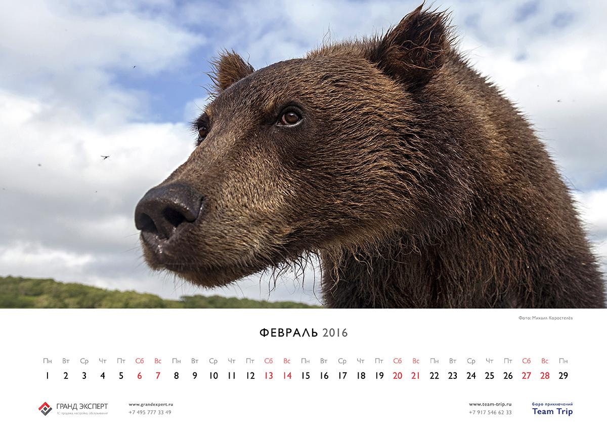calendar_2016_a32.jpg