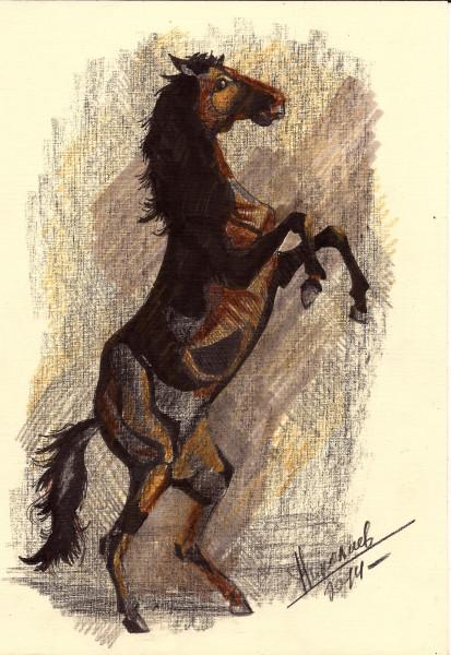 16 лошадь