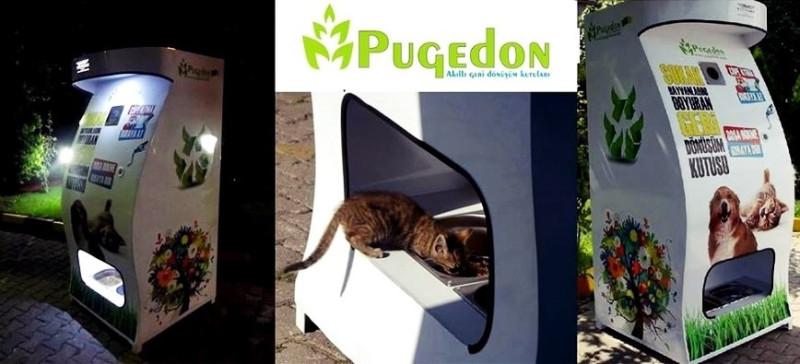 1_Pugedon-min.jpg