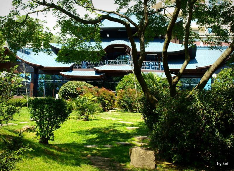Сад Русско-Японской дружбы в Сочи.
