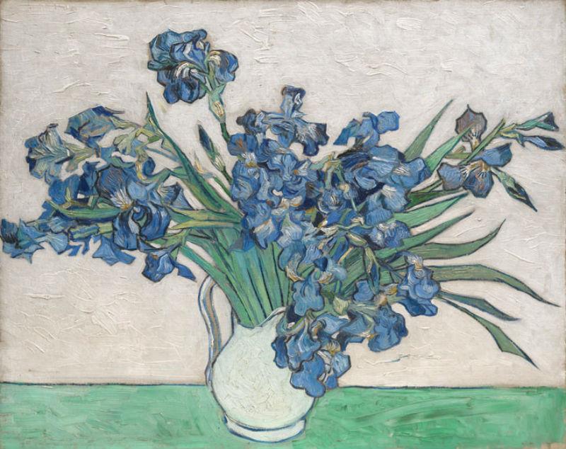 Vincent van Gogh Irises.jpg