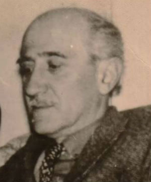 Феликс Варламишвили.jpg