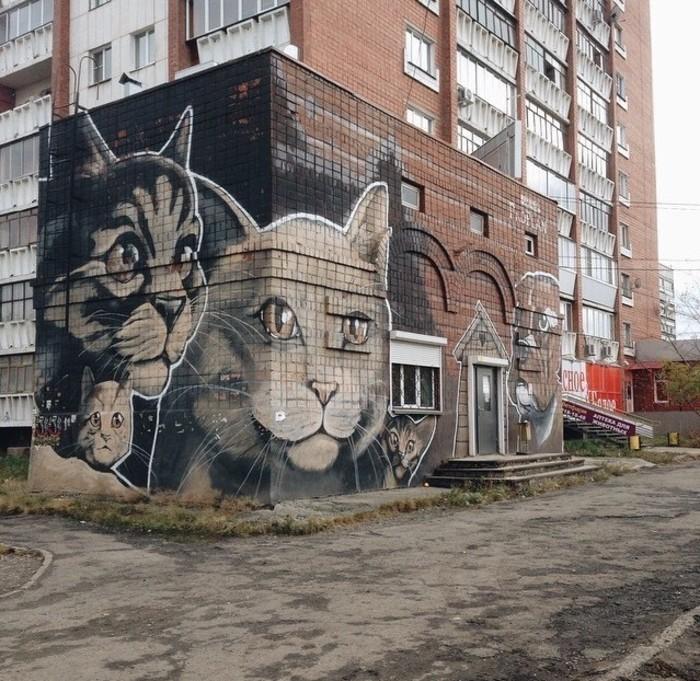 коты-стрит-арт-1.jpg