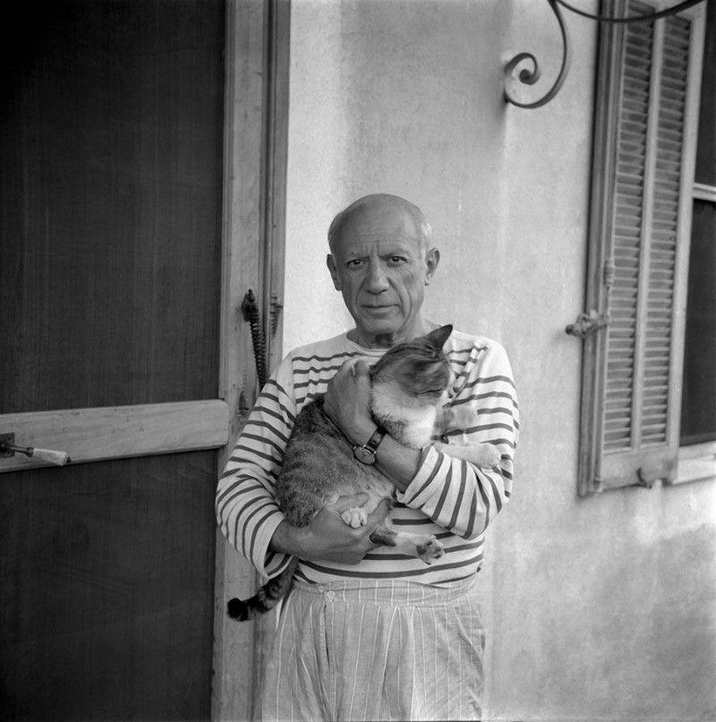 Пикассо и кот.jpg