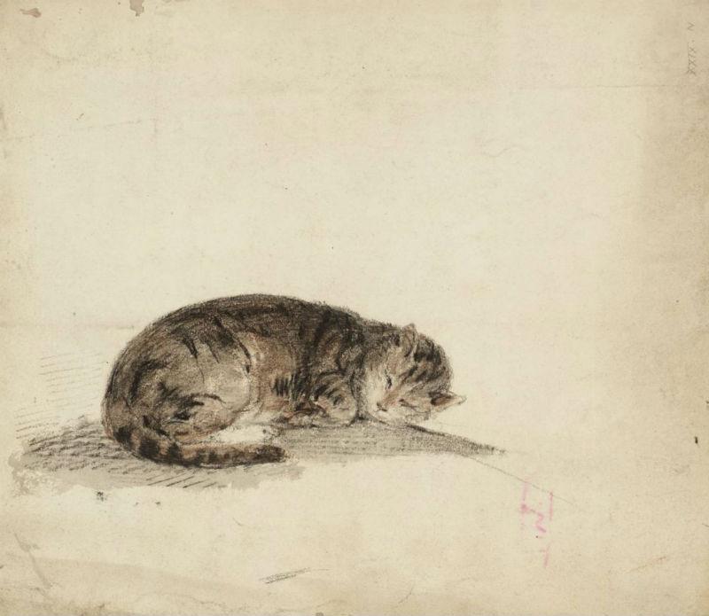 Джозеф Мэллорд Уильям Тёрнер - Набросок спящей кошки - 1797.jpg