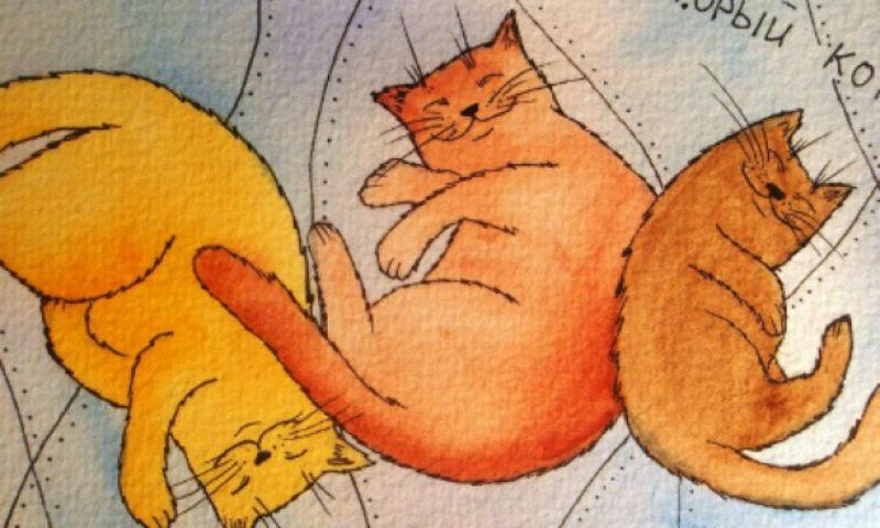 Кошки спят.jpg