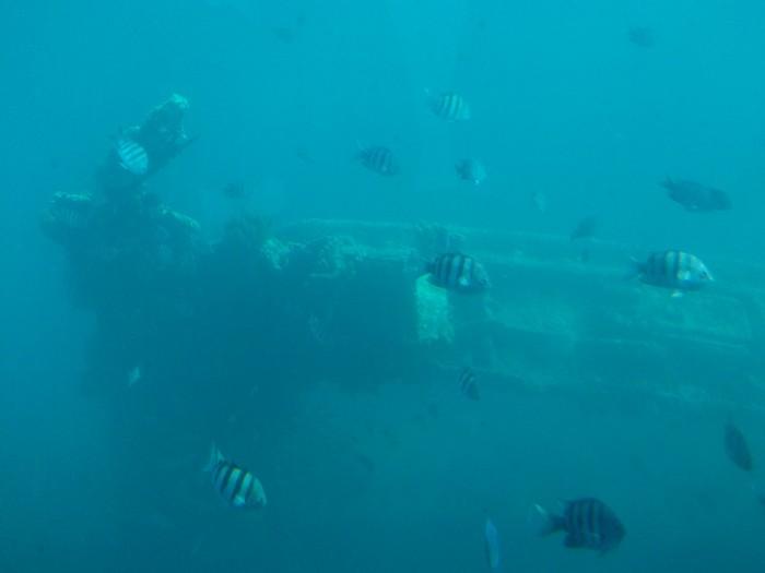 Aruba-011.jpg