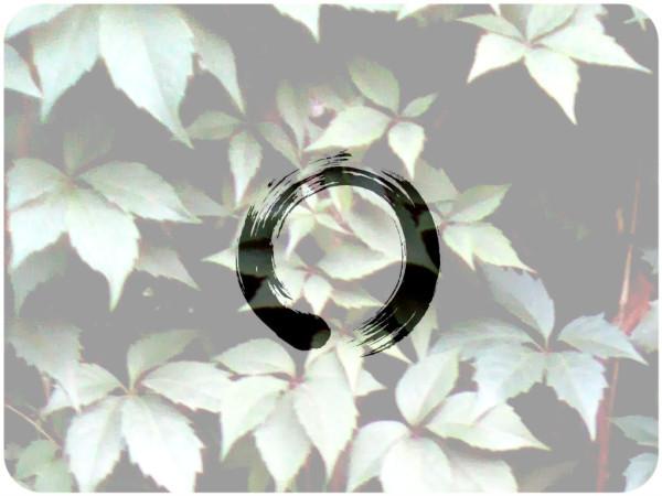 zen-enso_00410533.jpg