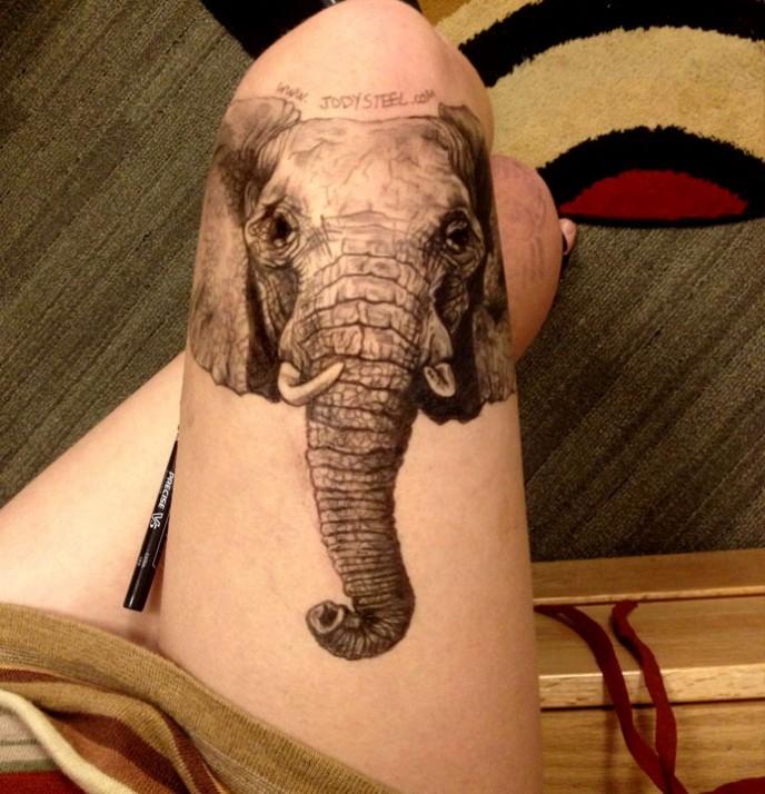 elephant-688x714