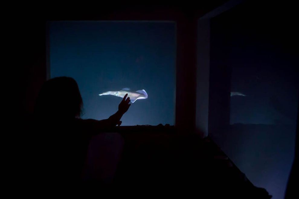 underwaterhotel06