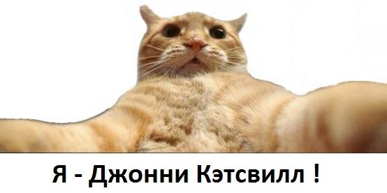 catsvill-imya