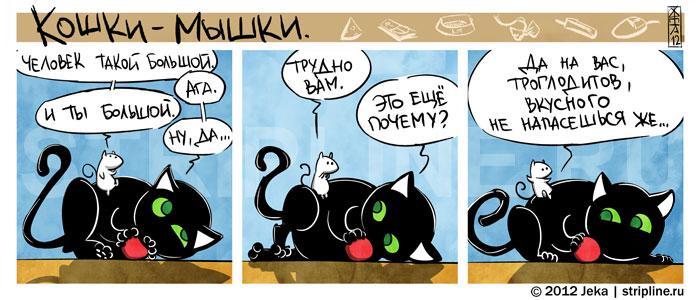 Кошки-Мышки-Комиксы-285918
