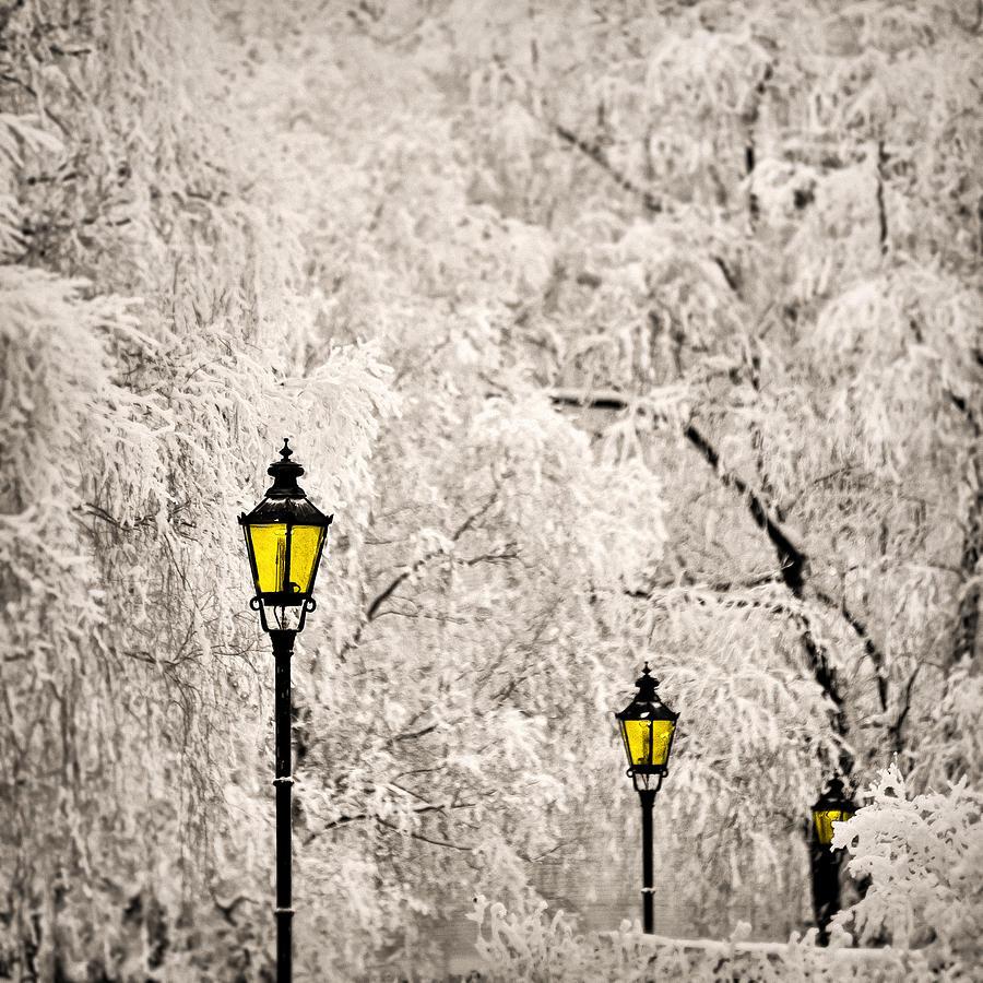 winter-lanterns-ari-salmela
