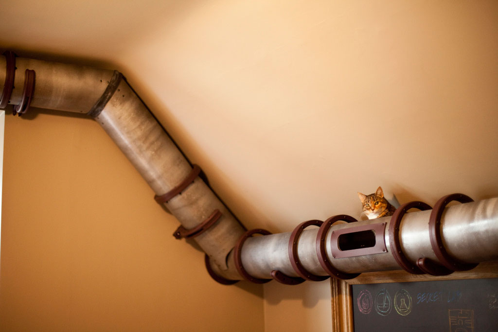 cat-tunnel-home-office-3