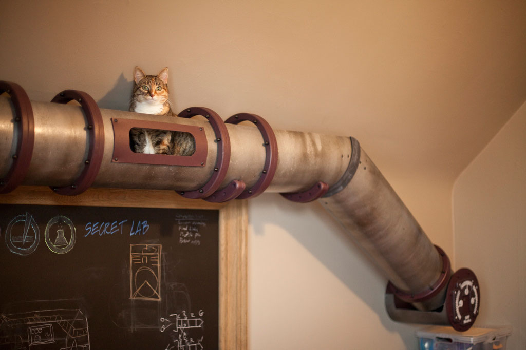 cat-tunnel-home-office-4