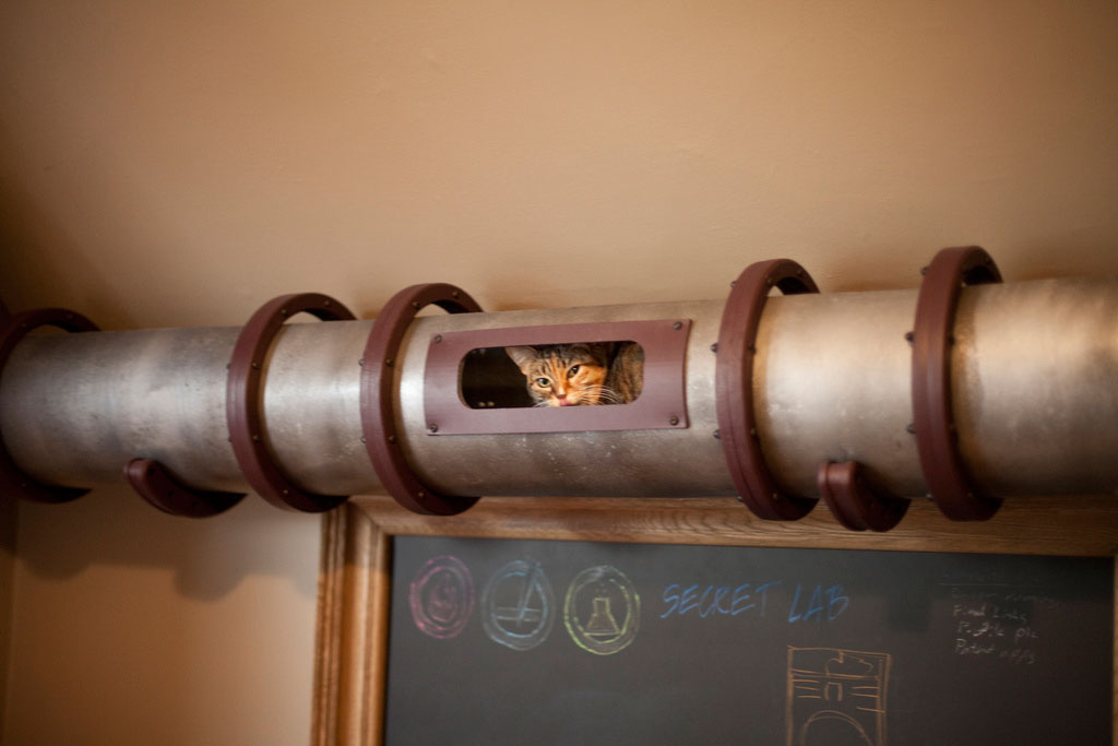 cat-tunnel-home-office-5