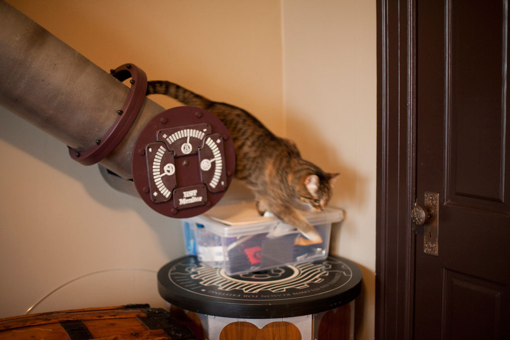 cat-tunnel-home-office-6