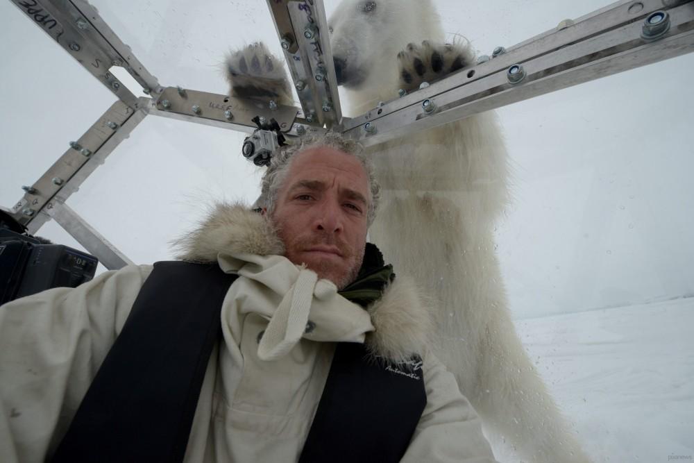 Polar-bear-gordon_www.pixanews-4