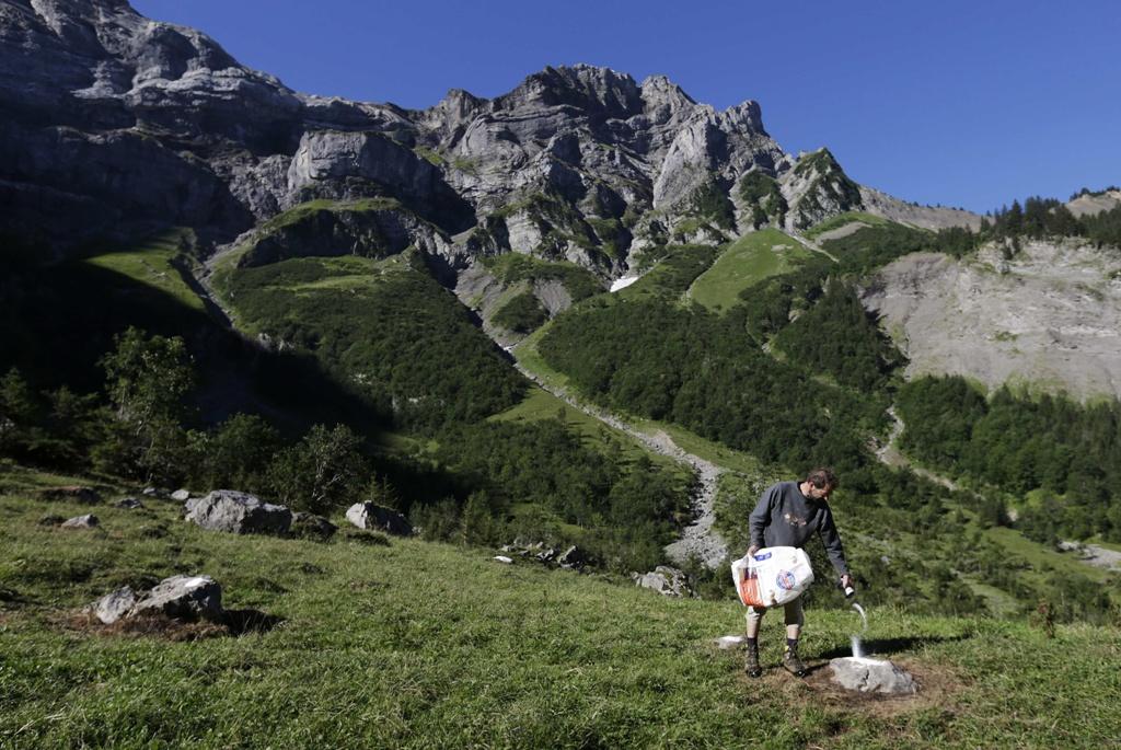 Pyrenean-Mountain-Dog-5