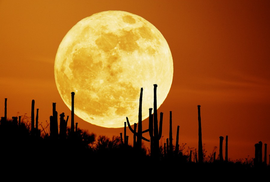 desert-moon