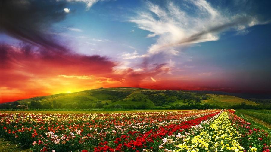 fascinating-scenery-wallpaper-for-2560x1440-hdtv-707-27