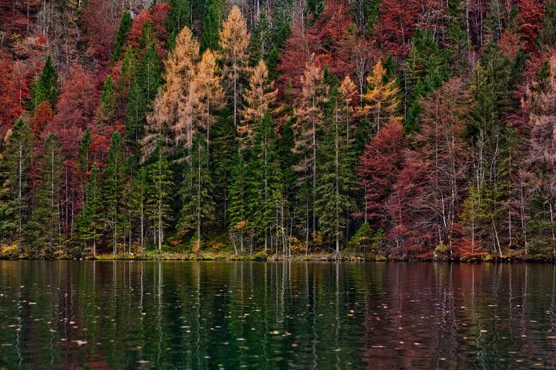 24-Кёнигзее - самое чистое озеро Германии