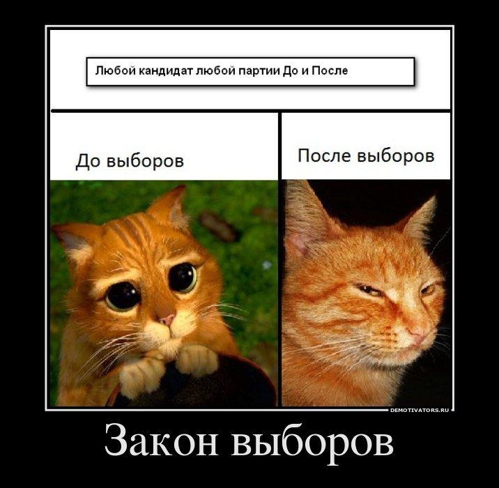 1323108591_712079_zakon-vyiborov