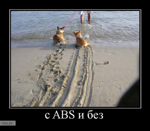 647988_s-abs-i-bez