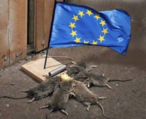 ЕвроКрысы