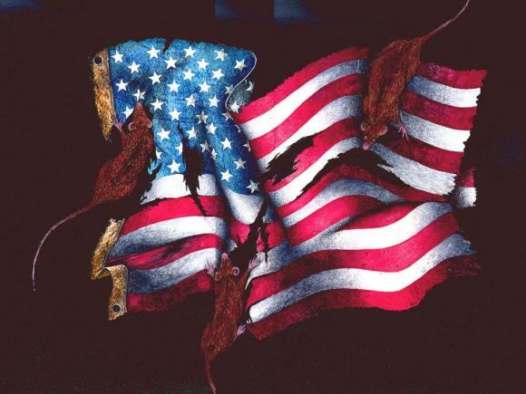 Флаг США - Крысы