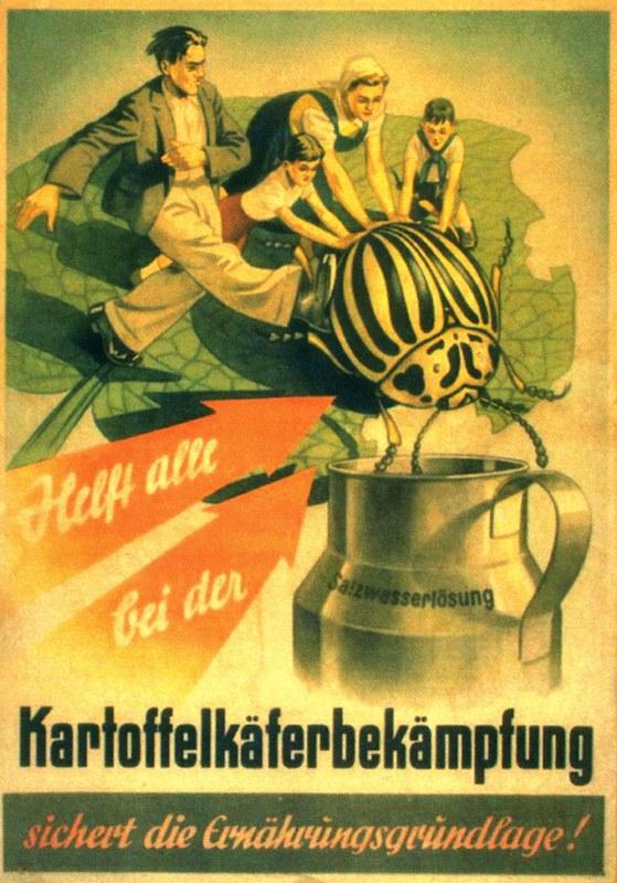 Борьба с колорадами в СССР - 7