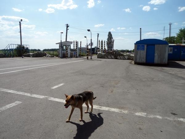 Бобик - последний пограничник Украины - Брошенный Довжанский пункт пропуска (07.06.2014)