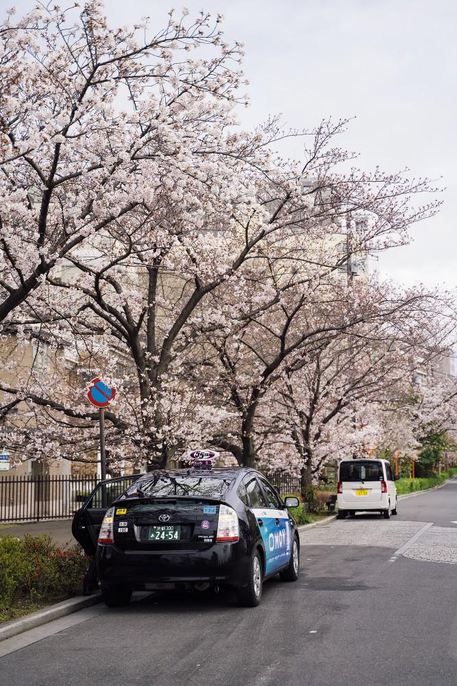 Киото и пандемия DSC08294777.jpg
