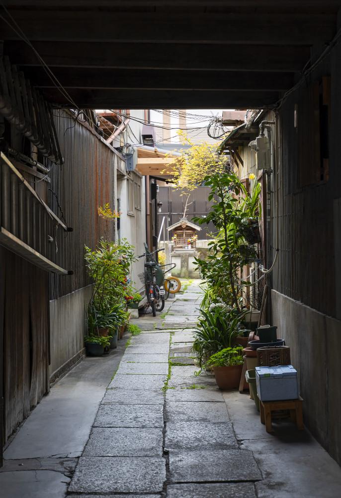 Киото и пандемия DSC08301777.jpg