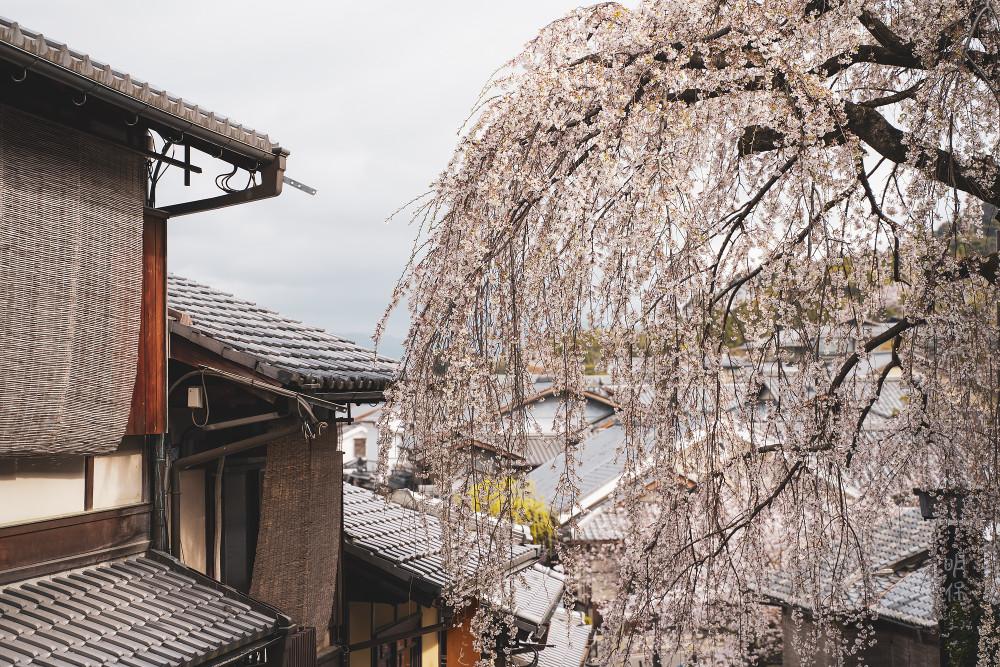Киото и пандемия DSC08321777.jpg