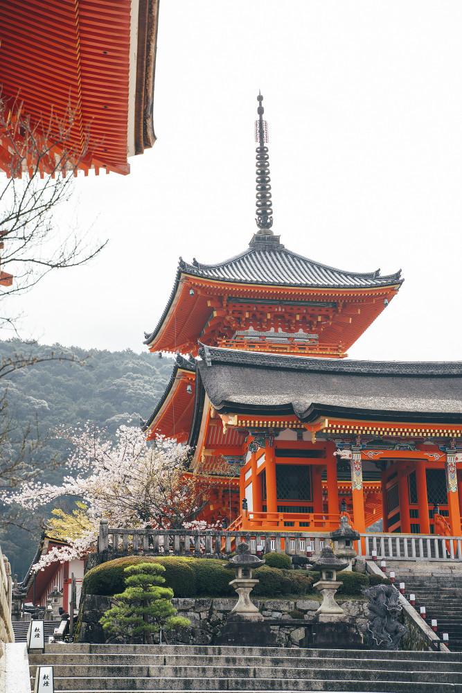 Киото и пандемия DSC08349777.jpg