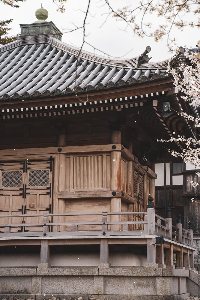 Киото и пандемия DSC08354777.jpg