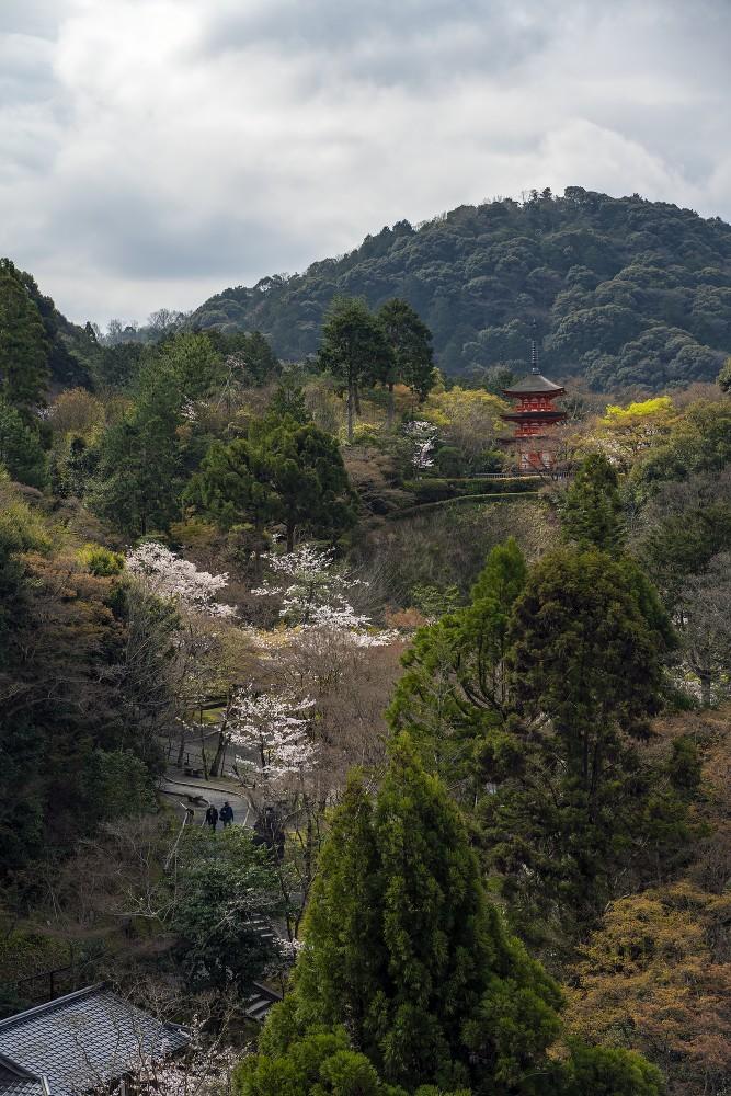 Киото и пандемия DSC08404777.jpg