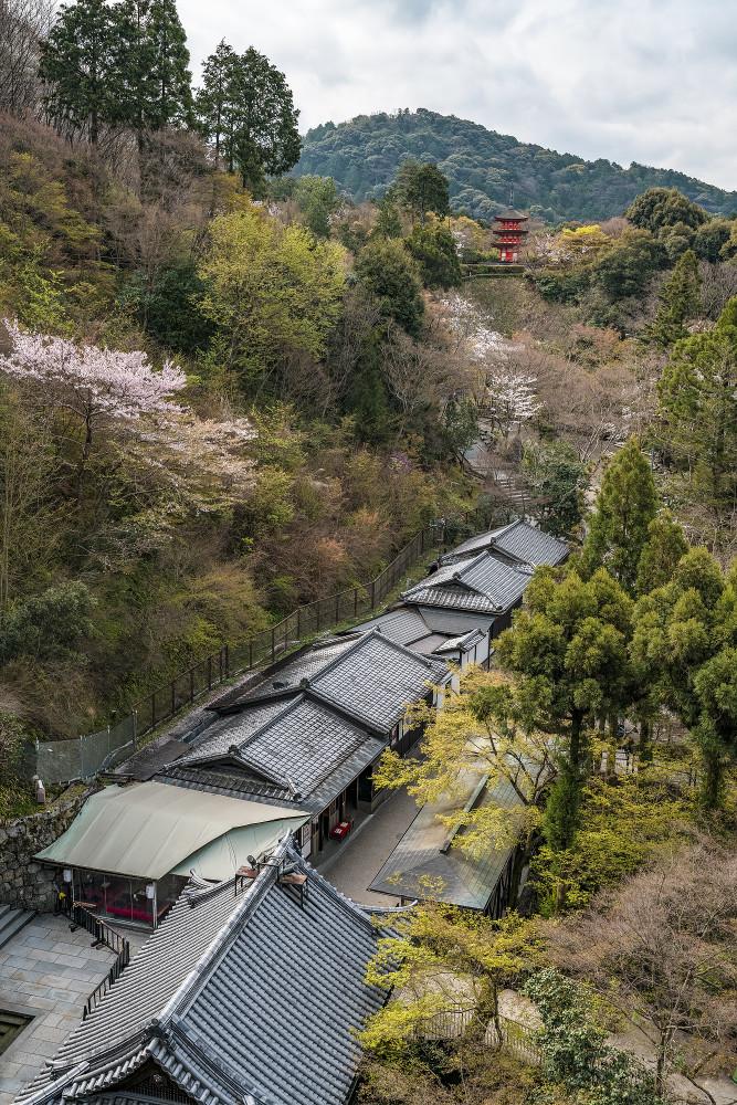 Киото и пандемия DSC08410777.jpg