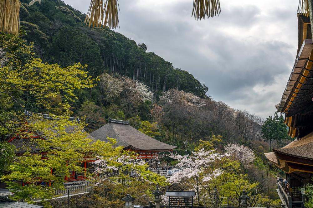 Киото и пандемия DSC08438777.jpg