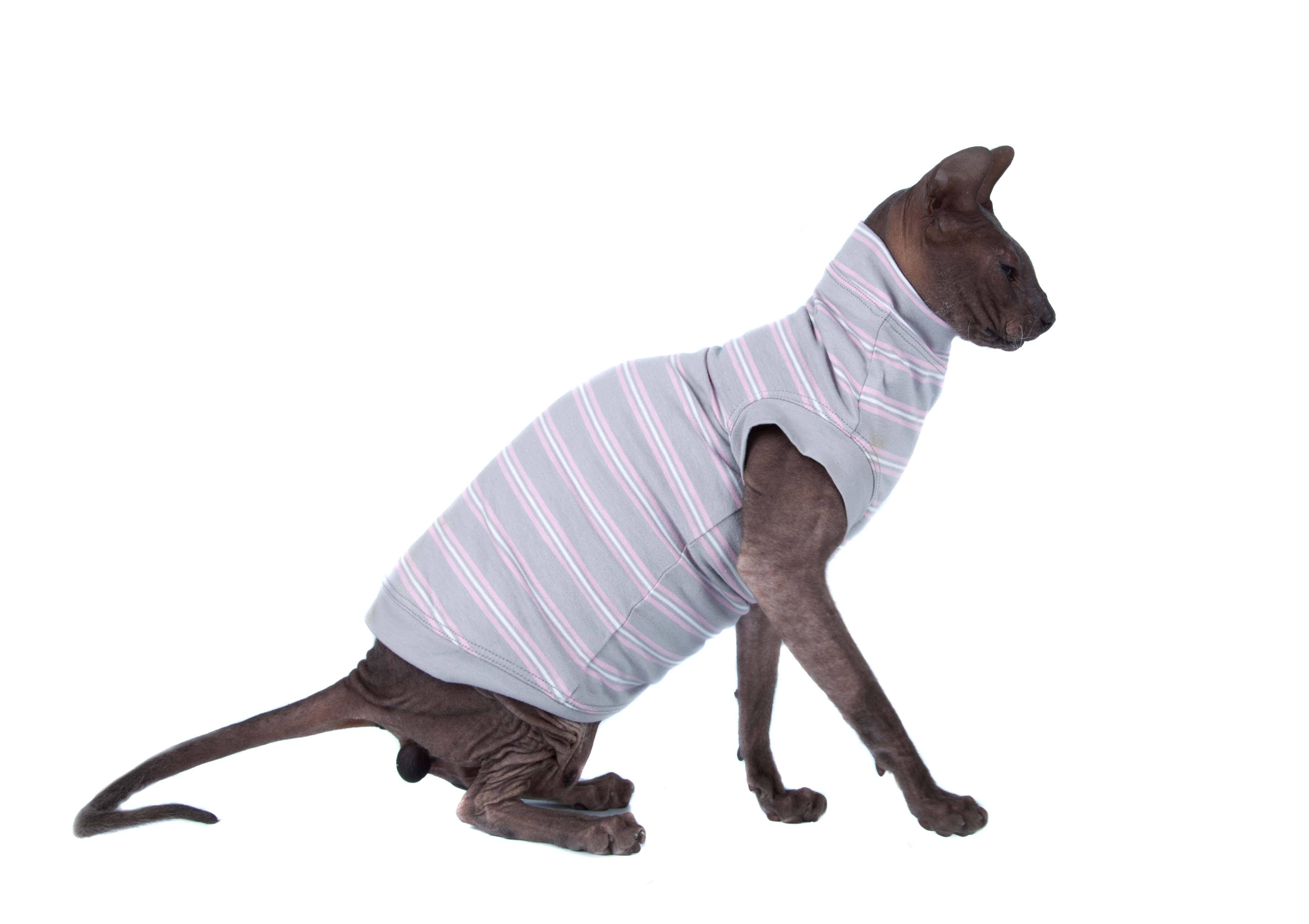 Пижама для ЖЖ
