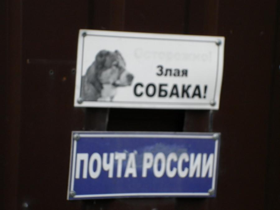 Почта России – злая собака!