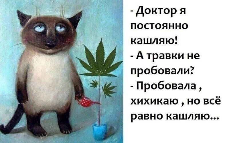 Источник: https://stihi.ru/pics/2020/03/21/10086.jpg