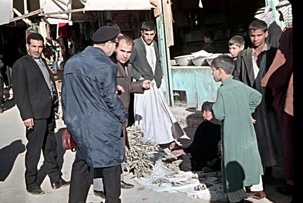 iraq-nasiria-69
