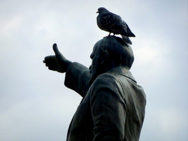 Ленин и голубь  18.04.2014