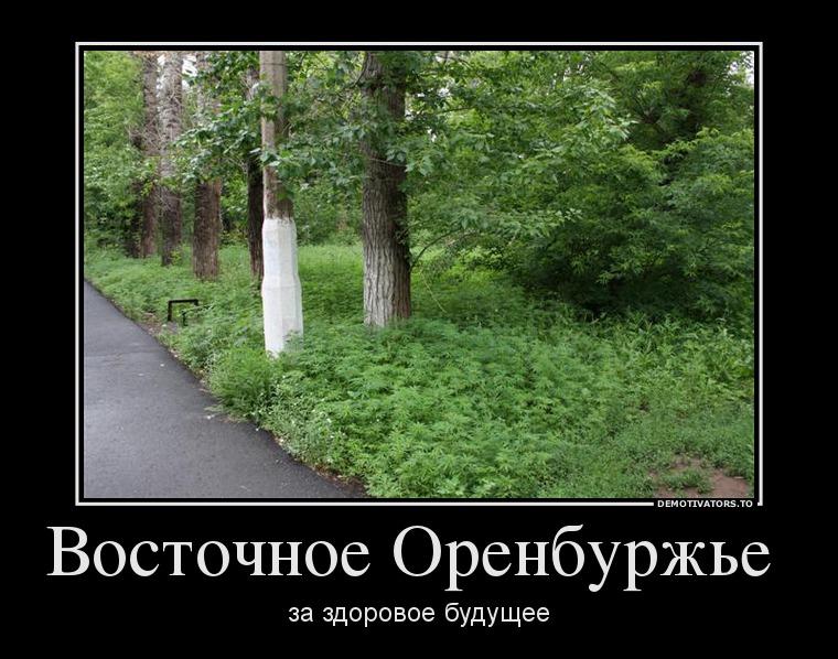 353698_vostochnoe-orenburzhe-_demotivators_ru