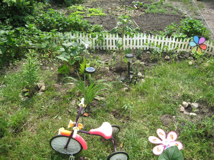 Соседский огород